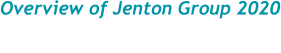 Overview of Jenton Group 2020